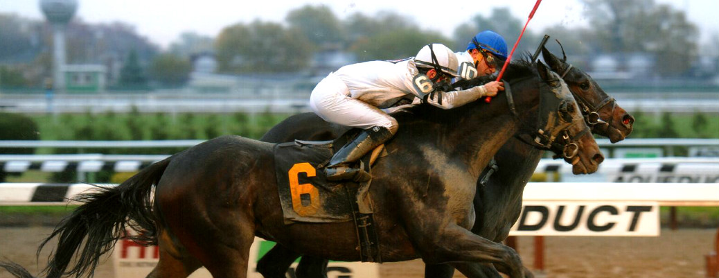 Oltre' Oro runs 1st Place @ Aqueduct On 11/6/14
