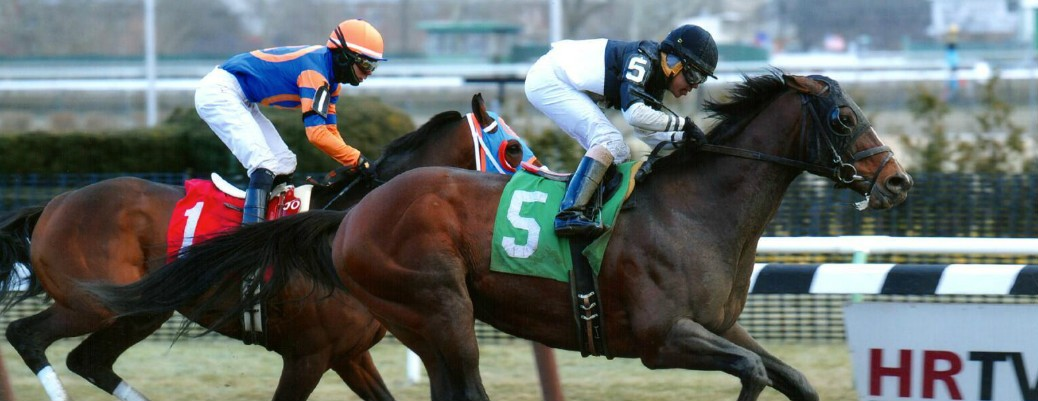 Son of a General runs 1st Place @ Aqueduct On 1/16/15