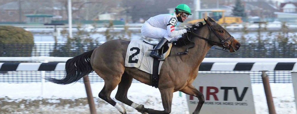 Flag on the Play runs 1st Place @ Aqueduct On 1/30/15