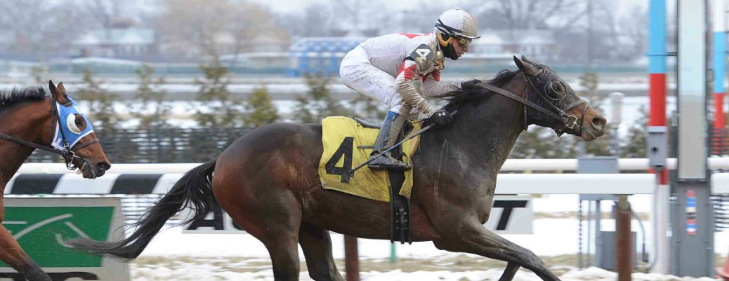 Private Thrill runs 1st Place @ Aqueduct On 2/8/15