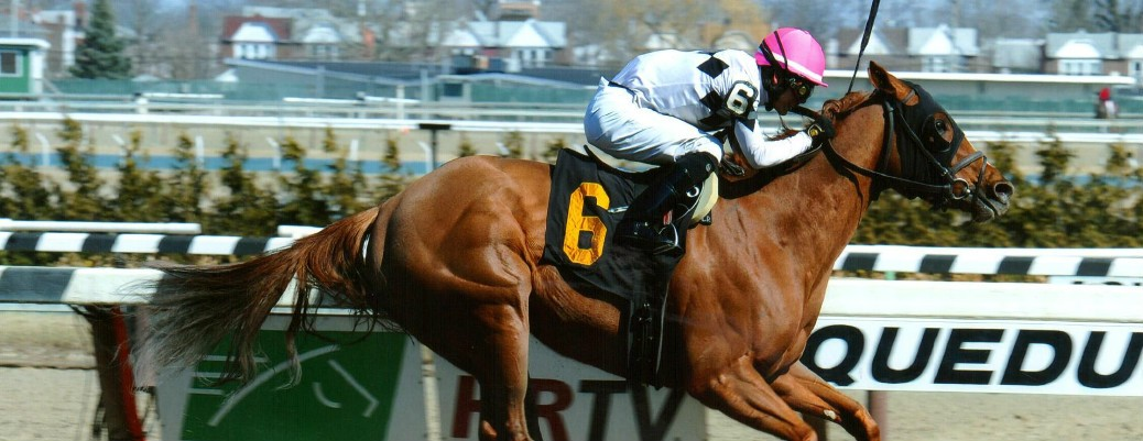 Jazzminegem runs 1st Place @ Aqueduct On 4/2/2015