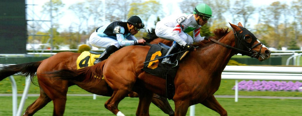 Bigger Picture runs 1st Place @ Belmont On 4/30/2015