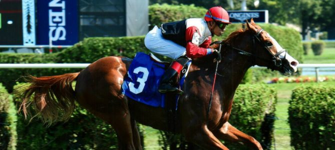 New York's Finest Wins 3 for 3 at Saratoga